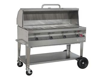 "48"" Stainless Grill With Hood"
